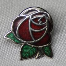 Arbeiderparti rose pin gitt av Eli Anne Hole