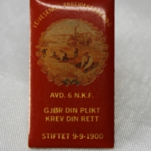 Veivesenet arb forening i NKF jakke pin