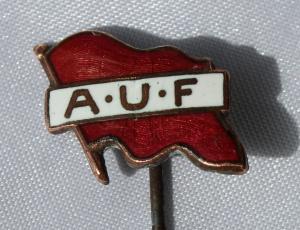 AUF gammel historisk jakke nål i kobber