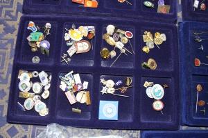 Pins samling 6 september 004