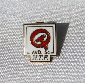 Oppland Transportarbeiderforening pin
