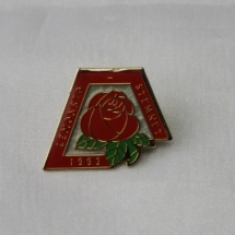 Pin fra Oppland Arbeiderparti