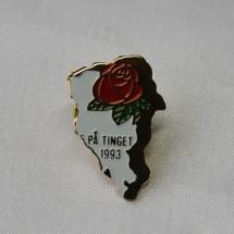Valgkamp pin fra Oppland 5 på tinget 1993