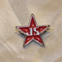 Pin fra Rød Ungdom Internasjonal Solidaritet