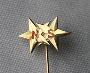 Nål fra Norsk Styrmannsforbund (sannsynligvis for 25 års medlemskap siden nålen er i gull (585)
